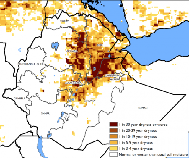 How Bad is the Drought in Ethiopia? at Tadias Magazine